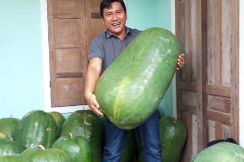 Tour du lịch Quy Nhơn - Bình Định - Làng bí đao khổng lồ 3 ngày 3 đêm ( Xe giường nằm )